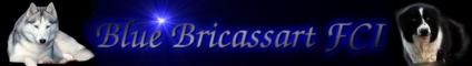 Bricassart